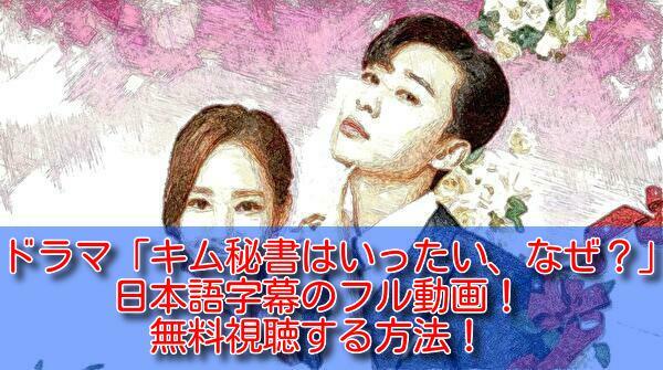 キム秘書はいったい、なぜ(ドラマ)の日本語字幕のフル動画!無料視聴する方法